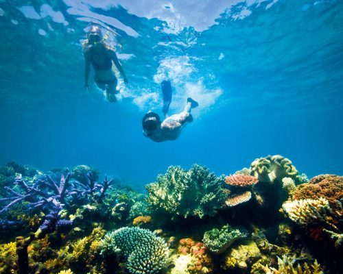 australian-great-barrier-reef-1