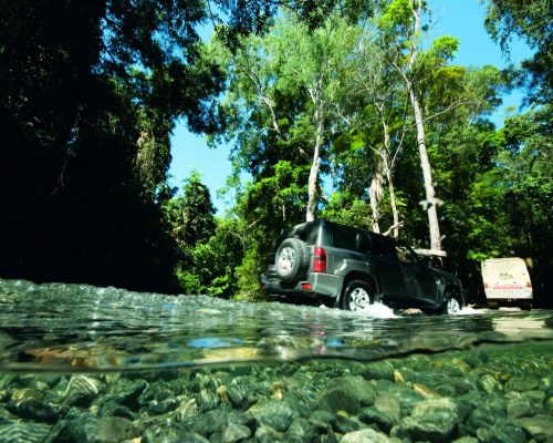 daintree-forest-4wd-tour-1