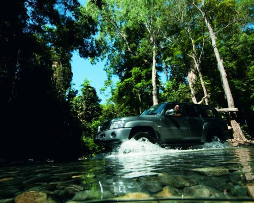 daintree-forest-4wd-tour-3