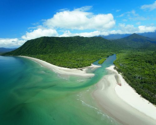 daintree-rainforest-tour-1
