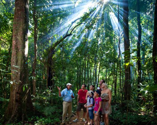 mossman-gorge-guided-tour-1