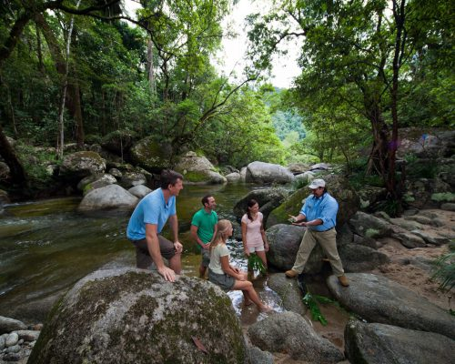 mossman-gorge-guided-tour-water-1
