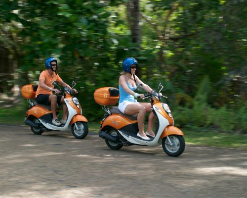 scooters-rainforest-port-douglas-cairns-1